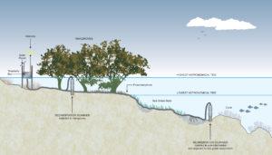 Schematic_with sedimentation ...
